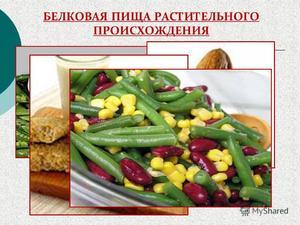 Белковая еда в рационе