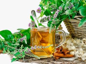 Как рекомендуется использовать травяной отвар для похудения