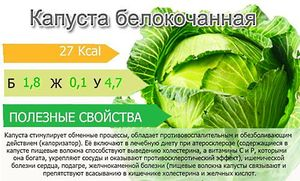 Калорийность белокочанной капусты
