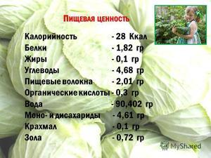 Польза капусты для кормящих