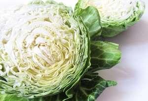 Употребление белокочанной капусты