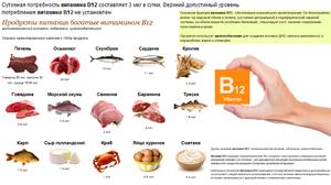 Причины нехватки витамина в12
